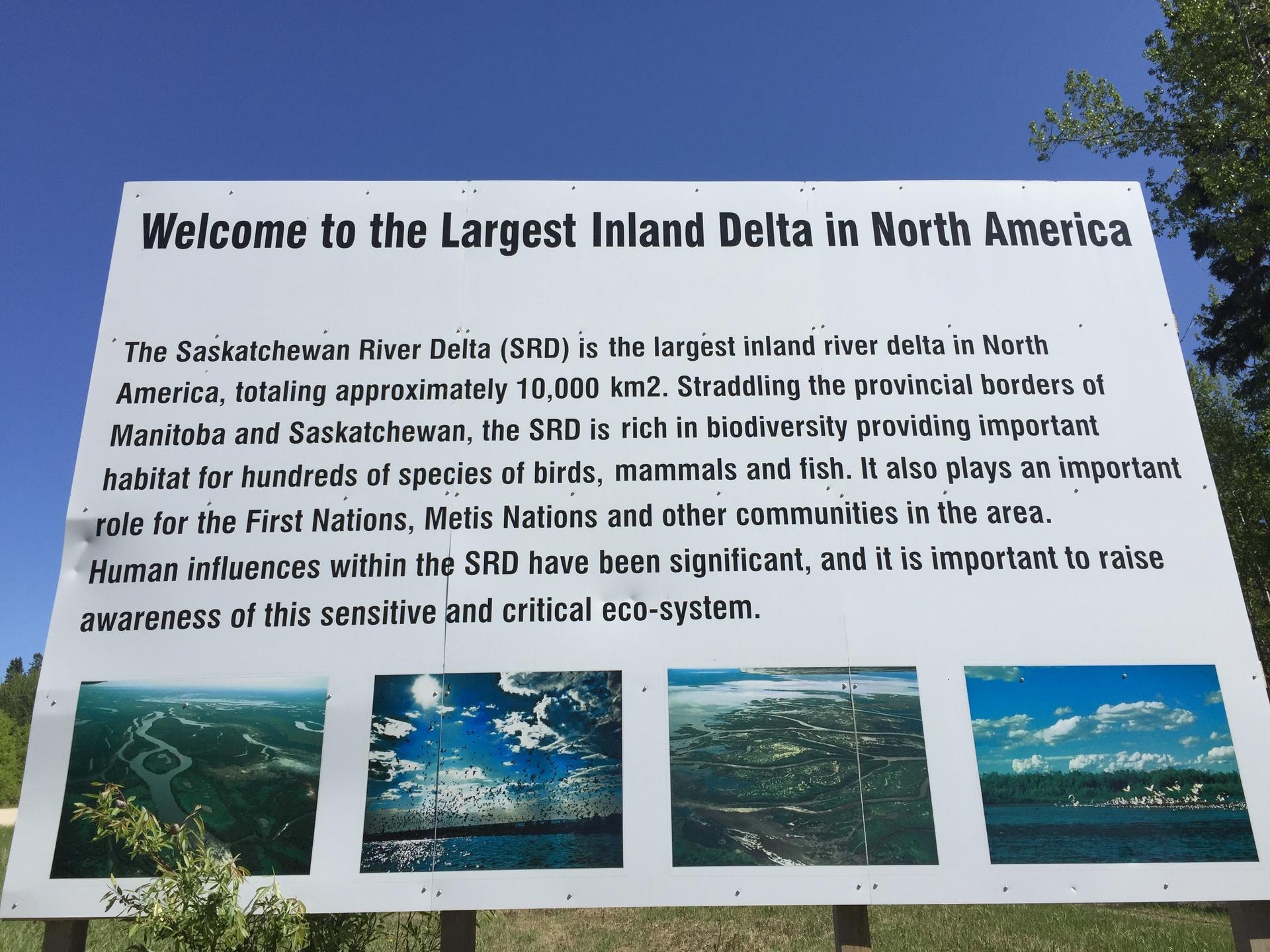 Delta Sign